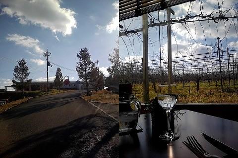 丹波ワインのワイナリーとレストランからの眺め、12月で何も残っていませんがなかなかの趣き。