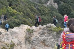 須磨アルプスの特徴、たった300mの標高なのに岩が連なる尾根道(20分程)