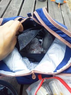 【冷凍して持ち込み】の食材は二重にしたクーラーバッグの内側に格納しました。