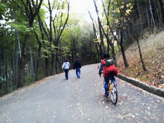 下見では緑地公園の中も走った、結構面白い。