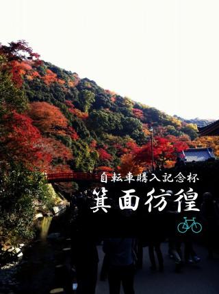 photo_1_word_