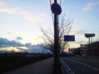 街路の間から取った写真、右にIKEAそして左には「海の向こうの」工場地帯が連なる。
