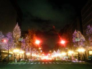 大阪市の実施する御堂筋のイルミネーションは経済活性作のひとつだ。