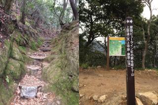 公園にしては結構な山道感・・・公園内はルートが何度も交差していますが、上のほうに行くと合流しています。