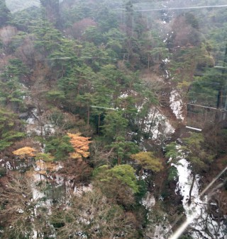 上空(?)からの写真、3月1日段階ではまだ残雪があった。