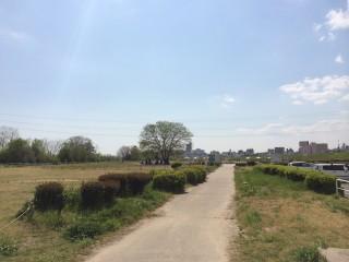淀川河川公園「西中島地域」バーベキュー広場