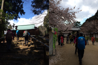 左は奥の院/右は地上の醍醐寺、下りでも歩いて40分強かかります。