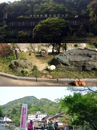 湯ノ山ロッジはなぜか猫だらけ、ここからひたすら道を進んでいく。