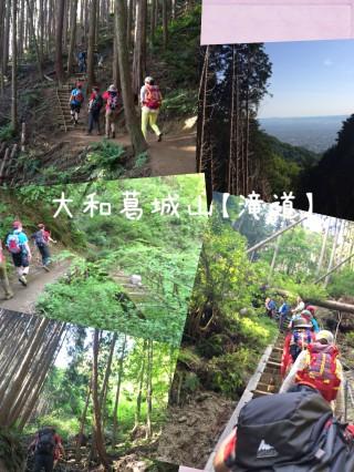 【滝道】階段と美しい緑の続く道です。