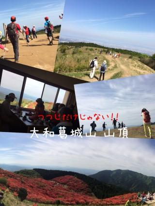 【牧場跡】ていねいに切り開かれた葛城山山頂は完璧な眺望を提供してくれます。