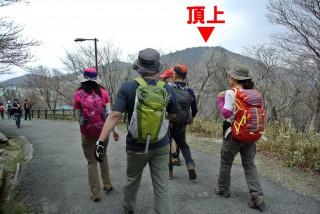 頂上までは「ゲレンデ」を行くか、横についている舗装路を行くかの2ルートがある。