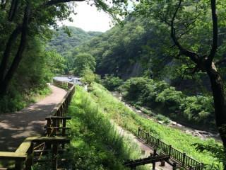 川沿いのルート