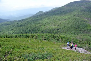 【硫黄岳下部】頂上の手前から森が切れて景色が楽しめるようになる。