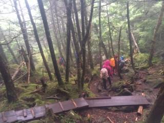 【沢の道】黒百合ヒュッテからの下り、岩、木道とよく滑る。