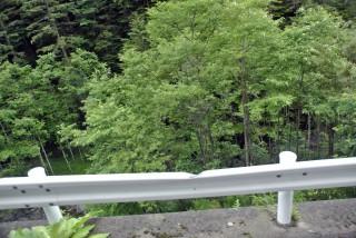 【谷側】落石は斜面の岩などで跳ねますので、道路幅くらいだと飛び越えてやってきます、凹んでいるところが岩のあたった場所です。