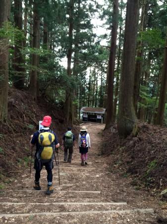 【愛宕神社参道】この杉の道は趣があって、初めてなら参道の上り下りでも十分楽しめる。冬なら「雪の参道」も楽しめる。