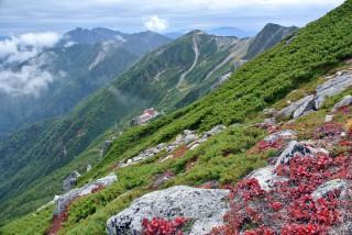 【色づき始める】木曽駒の稜線からの景色
