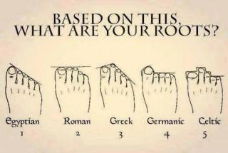 【足の形は様々】合うか合わないかは「個対個」の相性次第です。ちなみにこの画像には「ルーツ」とありますが、ギリシア足などは「絵画などでどう描かれているか?」なんかを評価しているので、必ずしもルーツを示すわけではないそうです。
