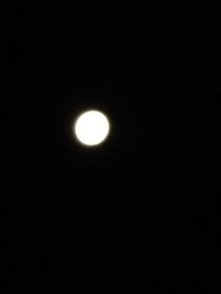 【ミラクルムーン】昨日は空を見上げましたか?ミラクルムーンでしたね。