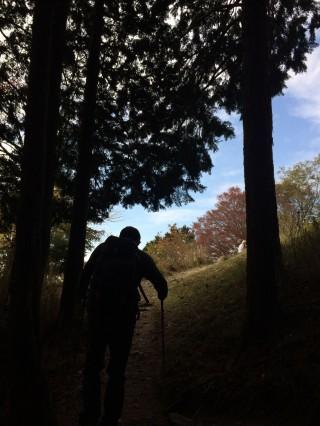 【ケーブル山頂駅へ】頂点付近の分岐で「山頂駅方向」へと進む。