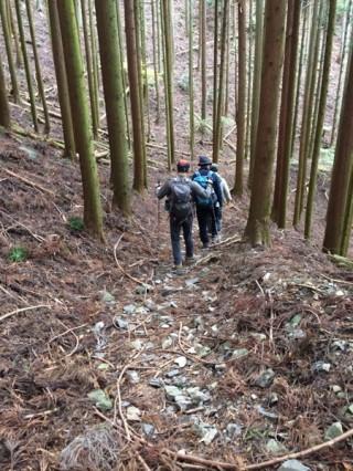 【八瀬口は大荒れ】崩落などはないが、石や枝が道を覆っていて歩きづらい。