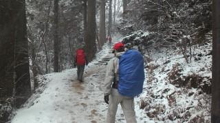 【杉林の道】早い時期にはこのあたりから雪が積もっている。
