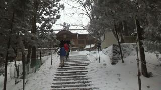 【雪の世界】凍りついたような気温で空気も澄んで見えます。