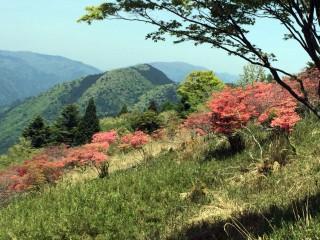 【葛城山】京都・奈良・大阪は歴史的な記録によく残っている。