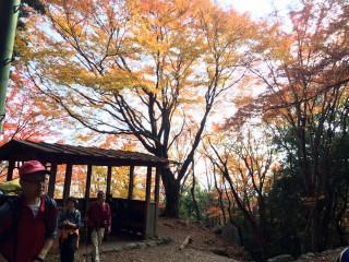 【五合目休憩所】この休憩所の付近は例年美しい景色が見れます。