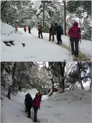 【中盤戦】中盤は斜度も抑えられて歩き易い、新雪も浅いので足場にしやすい(二枚目の写真は「紅葉の名所」でもある3合目の休憩小屋)