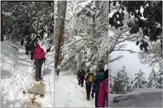 【雪の中を進む】新雪はあまり滑らないので快適に進めた、足首まで埋まらない程度なら新雪を踏んでいけば快適に歩ける。気温は下がり、山の様子はどんどん「雪の女王」的になる。