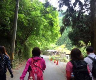 【美しい道】美しい村の道です、舗装はされていますが。