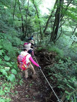 【下り】松尾寺側のほうがロープやハシゴは多い。