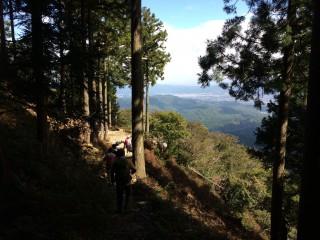 【愛宕山から大杉谷へ下る】 大杉谷、月輪寺へは神社の大階段下の向かって右のわき道へと進む