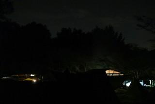 【Nikon1】森の影と夜空の境界も取れている。