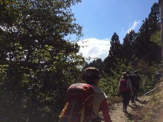 【京都市外も見えてくる】展望のある山道です。