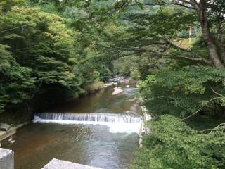 【とりあえず先月の清滝】清滝川はまあ穏やかな川です。この紅葉も紅葉している・・・はず?