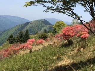 【普段歩いている山が基準】何度か歩いてみる事は必要、変化があって楽しい近所の山を見つけよう。