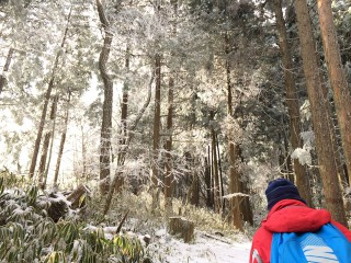 【樹氷と朝日の中を歩く】月並みな言い方では神秘的な光景