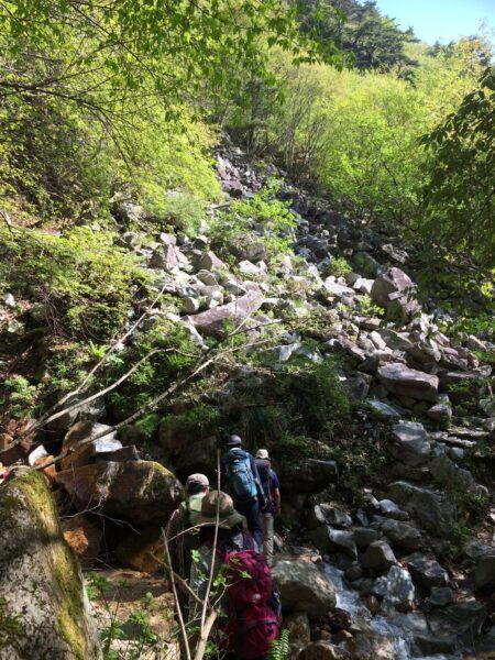 【青ガレ】青みがかった岩が積み重なっている「ガレ場」だ。