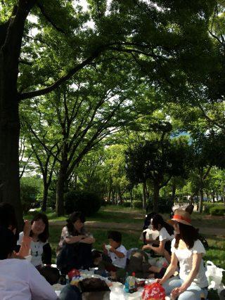 【一番近所の森】大阪城公園、花見エリアももう新緑で一杯。