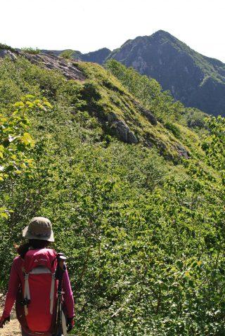 【西岳手前で右折】水俣乗越の看板で下山します。