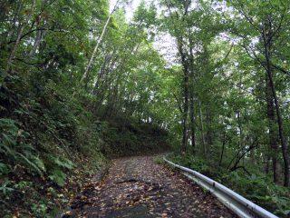 【山頂は雨】でも登り始めは悪く無いの繰り返し…初めから雨ならやめるのに!!