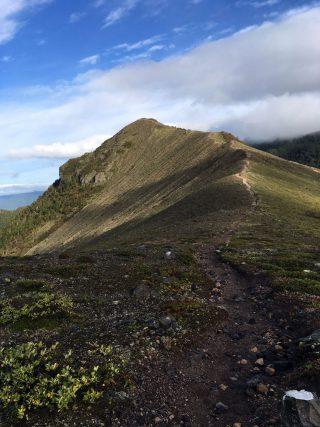 【風不死岳へ】縦走路、真ん中に見えるのは「932峰」 右側をかすめて右奥の緑の峰(風不死岳)を目指します。