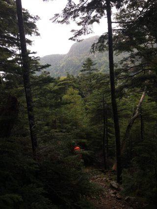 【下り】本沢温泉付近ではほんのり空も明るくなってきたが…。